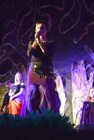 Galeria CYGAŃSKA BIESIADA_koncert